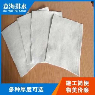 连云港防腐蚀土工布性能与功效