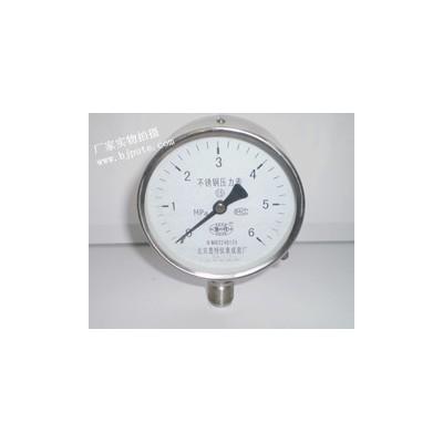 YTF100不锈钢压力表,防腐压力表