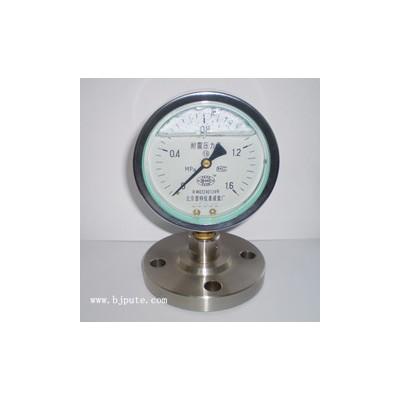 Y-100MF法兰耐震压力表