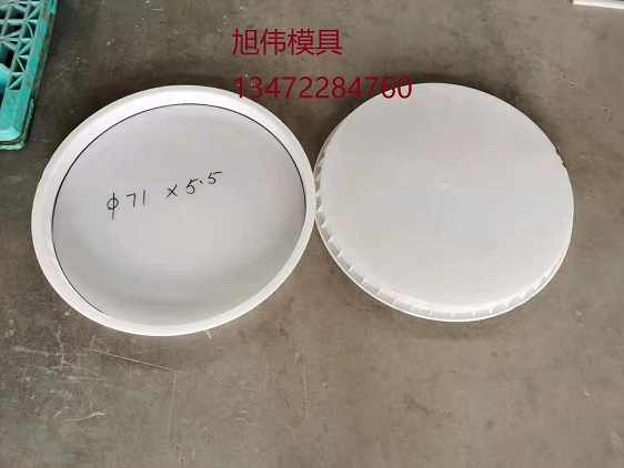 超低价格井盖塑料模具(图) 污水井盖塑料模具