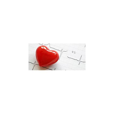 综合性体外致心律失常评价(CiPA)|离子通道|离子通道服务