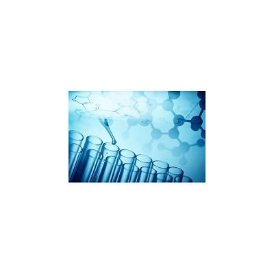 化合物安全性筛选|离子通道|药物筛选|药物筛选服务